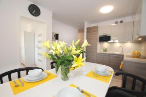 Apartament Solnex