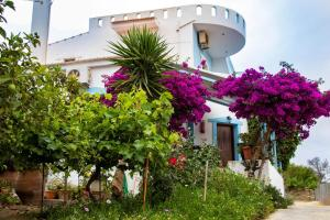 Hostels e Albergues - Jodi\'s Pension