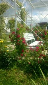 Guest House na Lenina 73, Case di campagna  Solënoye - big - 12