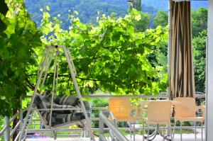 Guest House Gardenia & Wine Cellar, Penzióny  Lagodekhi - big - 47