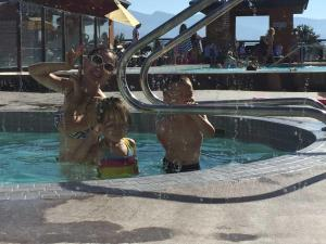 obrázek - 1004 Playa Del Sol Resort #473 Condo