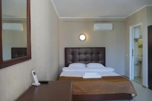 Astoria Comfort Hotel, Locande  Novy Afon - big - 18