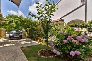 Apartments Milena 436, Apartments  Fažana - big - 53