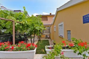 Apartments Milena 436, Apartments  Fažana - big - 50