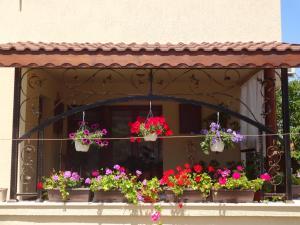 Apartment Dona, Apartmány  Černomorec - big - 43
