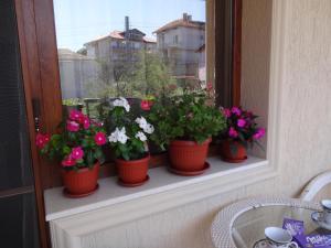 Apartment Dona, Appartamenti  Chernomorets - big - 48
