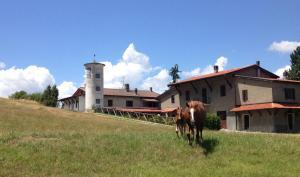 La Gazzeri, Residence&Country House, Aparthotels  Tagliolo Monferrato - big - 70