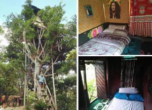 obrázek - Rumah pohon