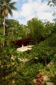 obrázek - Tangkoko Sanctuary Villa