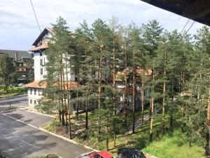 Apartment Vila Jezero, Apartmány  Zlatibor - big - 14