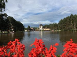 Apartment Vila Jezero, Ferienwohnungen  Zlatibor - big - 39