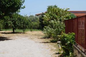 Lemonies Achaia Greece