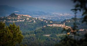 Maison Biagi - AbcAlberghi.com