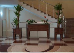 Sehirli Naftalan Health & Resort, Hotel  Naftalan - big - 39