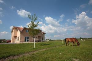Family Room Bilje 14318a - Lug