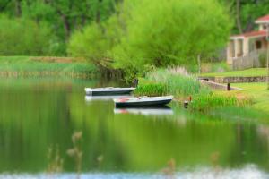 Lake Naverone Holiday Cottages, Resorts  Drakensberg Garden - big - 135