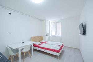 Apartment Tržaška