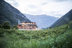 Hotel Burgaunerhof - Morter