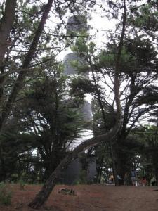 Cabañas Entreverdes, Turistaházak  Villa Gesell - big - 37