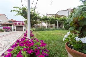obrázek - Apartment in Fazana/Istrien 33038