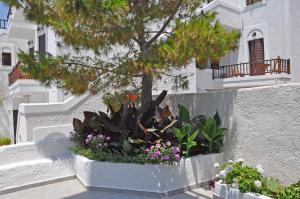 Studios Akrogiali Amorgos Greece
