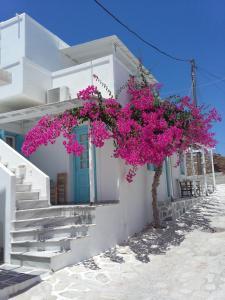 Galanis Place Antiparos Greece