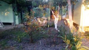 Guest House Tikhiy Sad