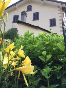 Casa Le Rose - Apartment - Alagna Valsesia