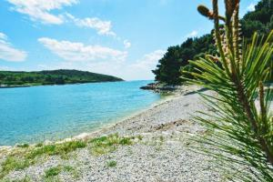 Luxury Apartments Croatia