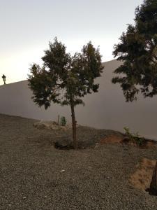 Lahzet Ghoroob Resort, Rezorty  Al Shafa - big - 16