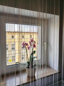 Luksusowe Apartamenty w Centrum Szczecina
