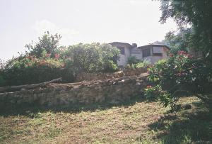 Black Star Lions Guest House