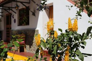 Hotel Fonda del Sol, Отели  Панахачель - big - 35
