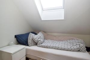 Solferie Holiday Apartment- Kongsgård, Apartments  Kristiansand - big - 4