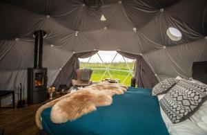 Reykjavik Domes - Gufunes