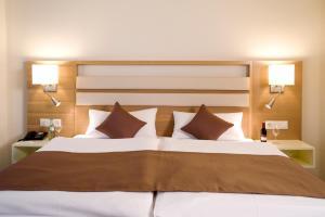 Ringhotel Goldener Knopf, Hotely  Bad Säckingen - big - 27