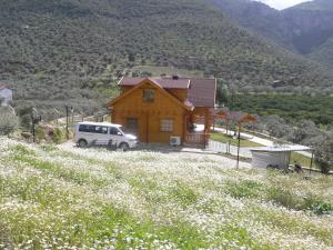Natureland Efes Pension, Residence  Selçuk - big - 38