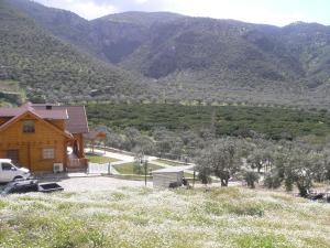 Natureland Efes Pension, Residence  Selçuk - big - 36