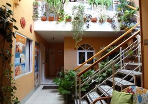 Hotel Dulce Hogar & Spa, Hotely  Managua - big - 64