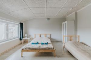 Apartamenty i pokoje na Złotej
