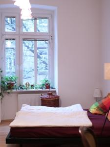 obrázek - Close to city centre-cosy flat