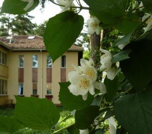 Guest House on Korolyova - Khripan'