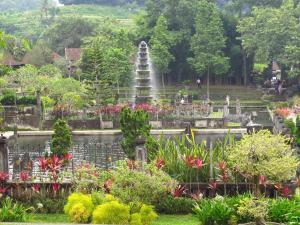 obrázek - Dhangin Taman