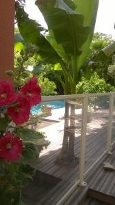 obrázek - Appartement Villa Mandarine