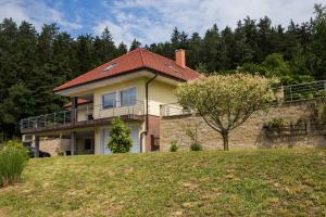Green garden villa with jacuzzi