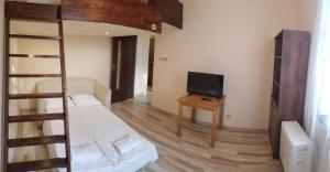 Penguin Rooms Business Gliwice