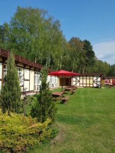 Natura Park w Stegnie