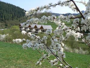 obrázek - Rekreačna usadlosť Pieninka
