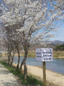 Pyeongchang River House - Apartment - Pyeongchang