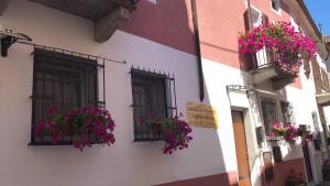 Auberges de jeunesse - La Casa del Colonnello
